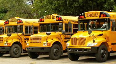 Three yellow school buses lined up side by side