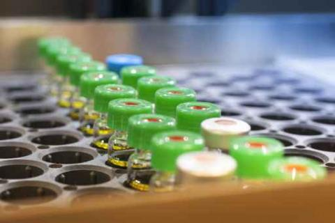 Vials of various vaccinations set in a rack.
